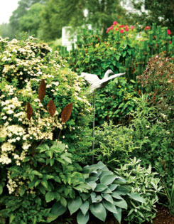 Layers of plants include ?Valerie Finnis? artemisia, hostas and white spirea.