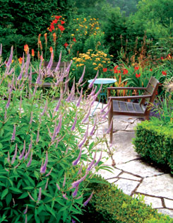 Clipped boxwoods outline the colour-filled beds