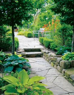 A step marks the transition from the sitting area in the Colour Wheel Garden to the hosta-filled Shade Garden