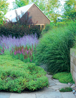 The pool border includes spiky gayfeather, Russian sage and graceful maiden grass