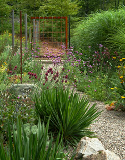 Fronted by clumps of spiky yucca, the long-stemmed blooms of Brazilian verbena and drumstick alliums act like a scrim in Deacon?s artful Gravel Garden