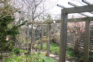 spring-jardin-de-refuse