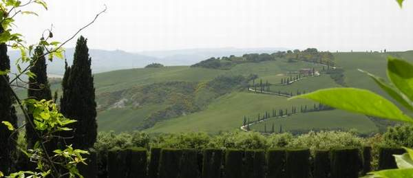 A View from Villa la Foce