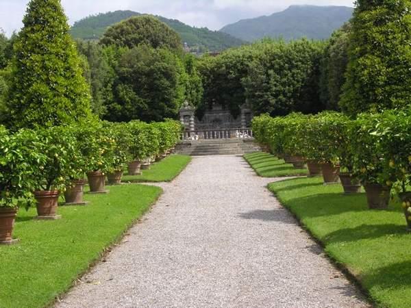 Villa Reale Di Marila near Lucca