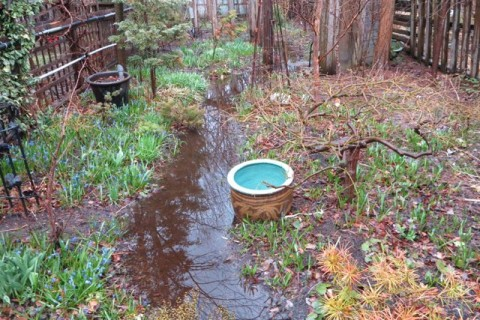 Garden flood April 2015